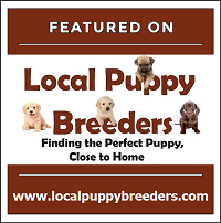 Local Puppy Breeders Featured Breeder